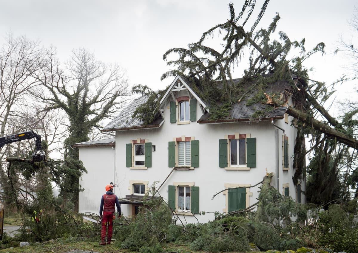 Sveitsissä Montmollinissa riehunut myrsky kaatoi puita talon päälle 10. helmikuuta.