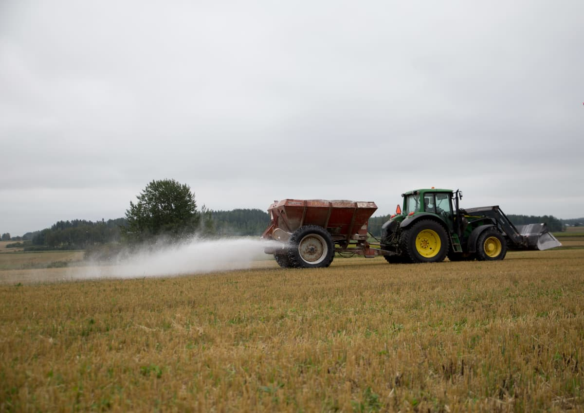 kipsikäsittely pelloille estää fosforin valumisen vesistöihin