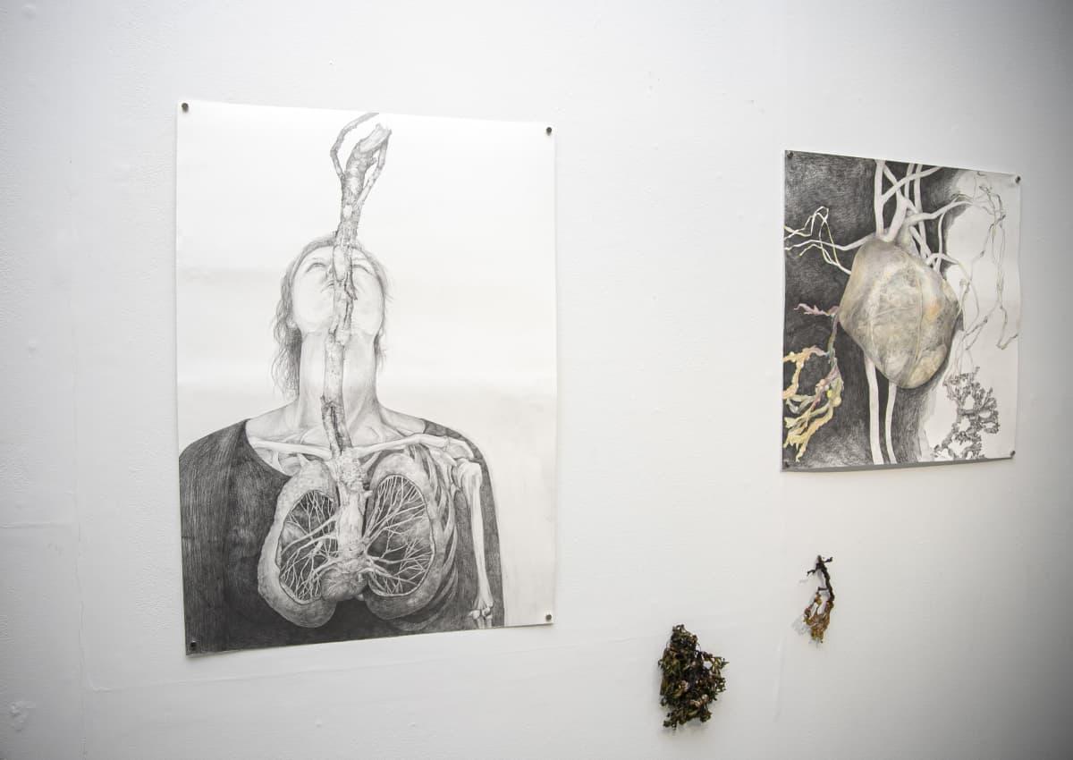 Kuvataidetta gallerian seinällä.