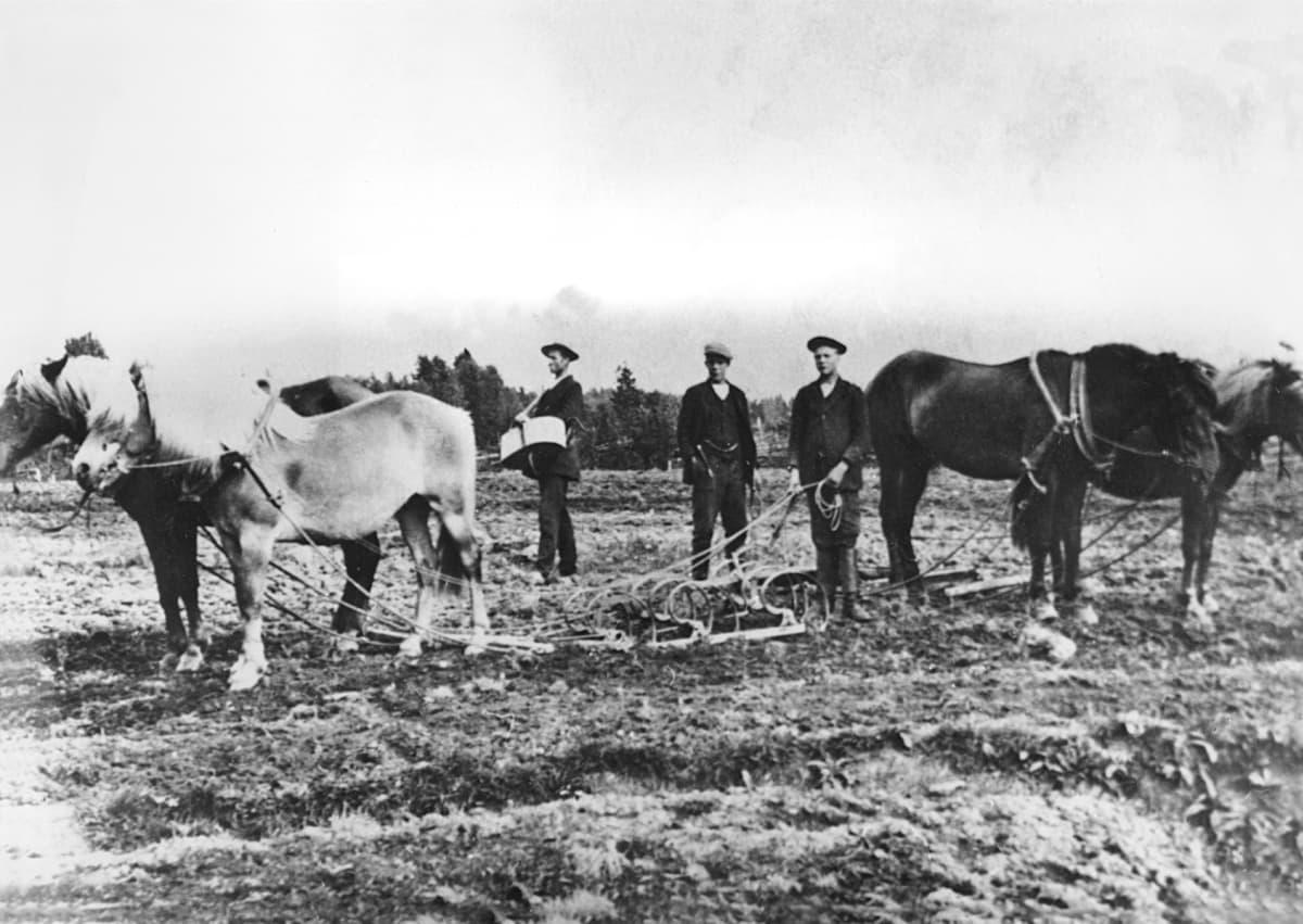 maataloustyöläisiä