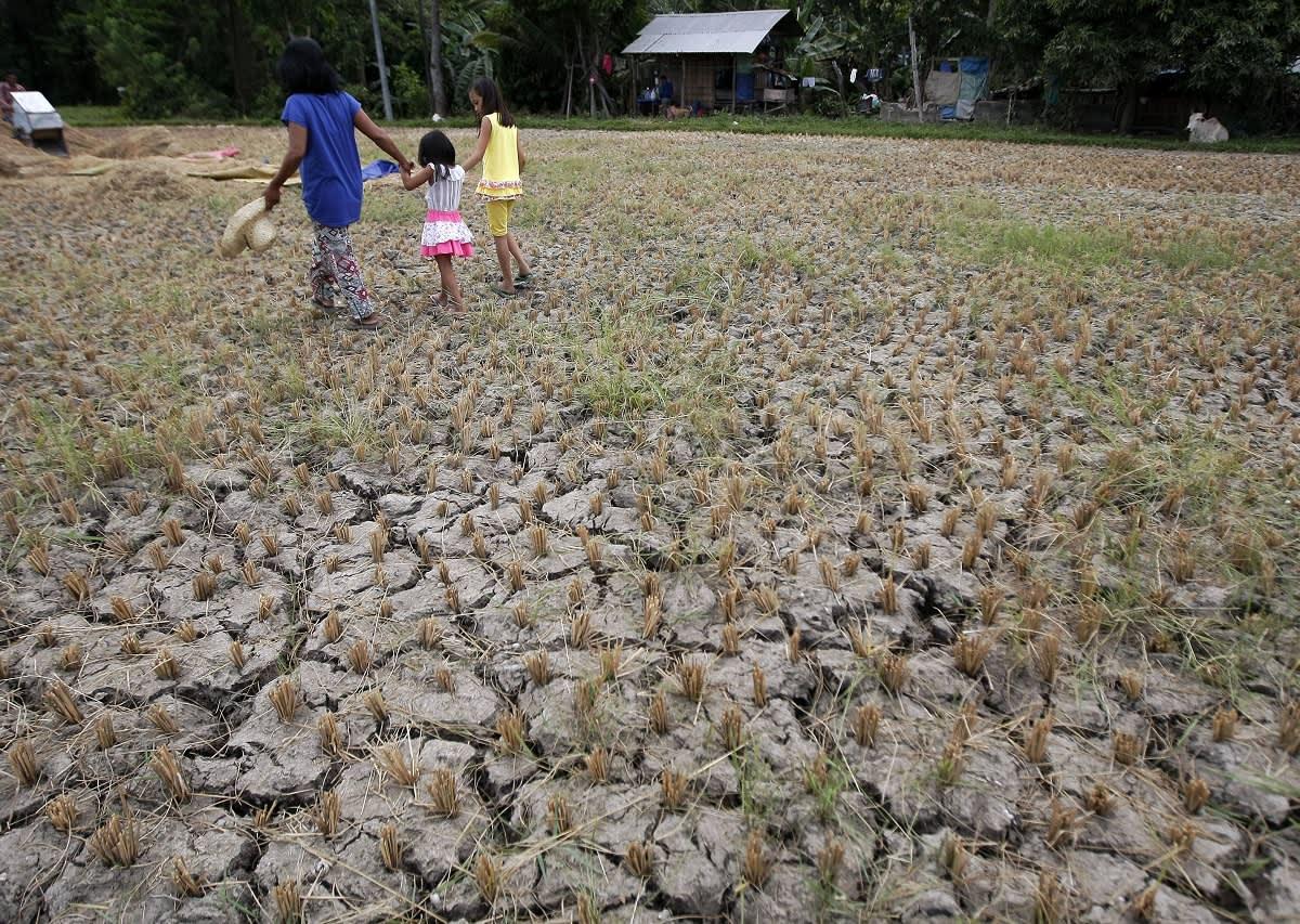 Aikuinen ja kaksi lasta kävelevät kuivuneella riisipellolla.