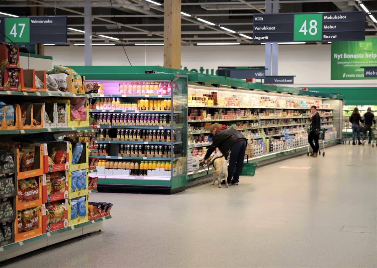 Jamppa Mikkola ja Nalli-opaskoira kaupassa.