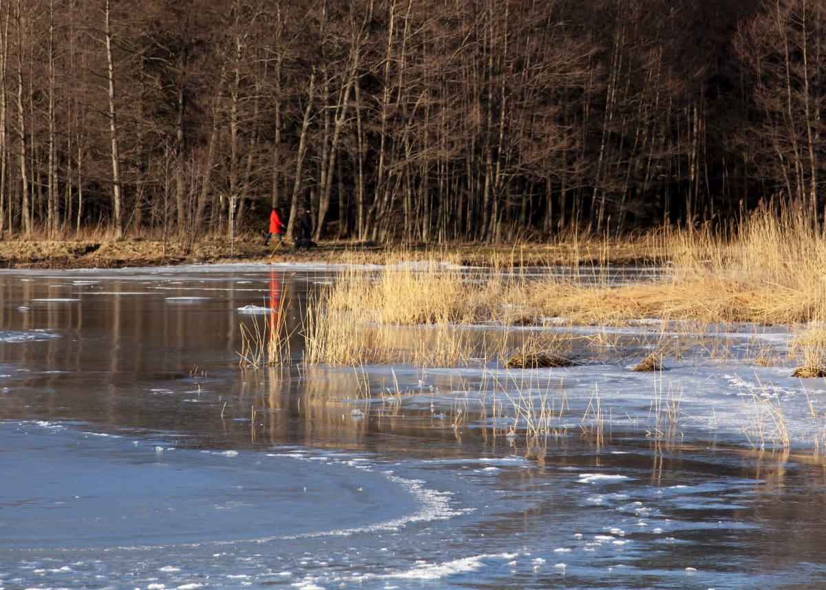 En vik bara delvis täckt av is, i bakgrunden ser man en människa gå längs stranden