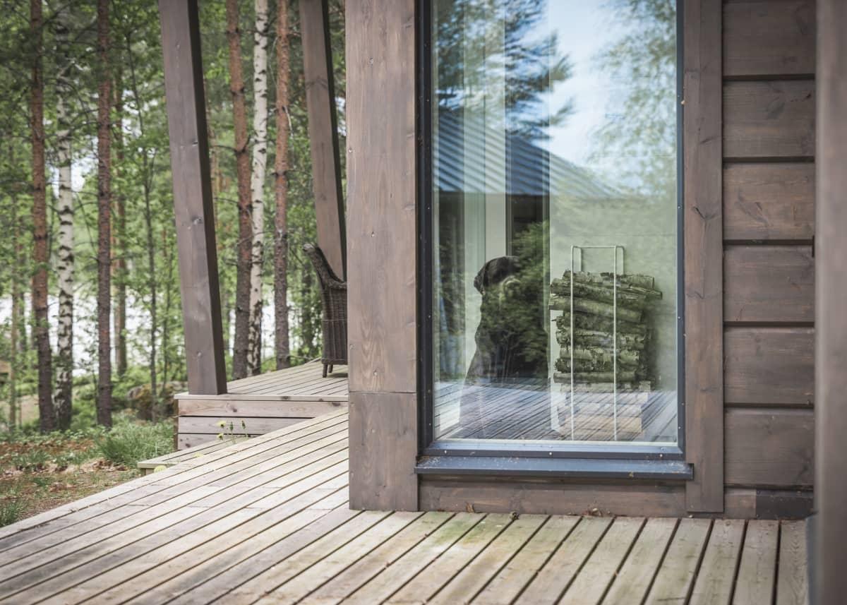 Talon terassi ja koira katselee ikkunan läpi.