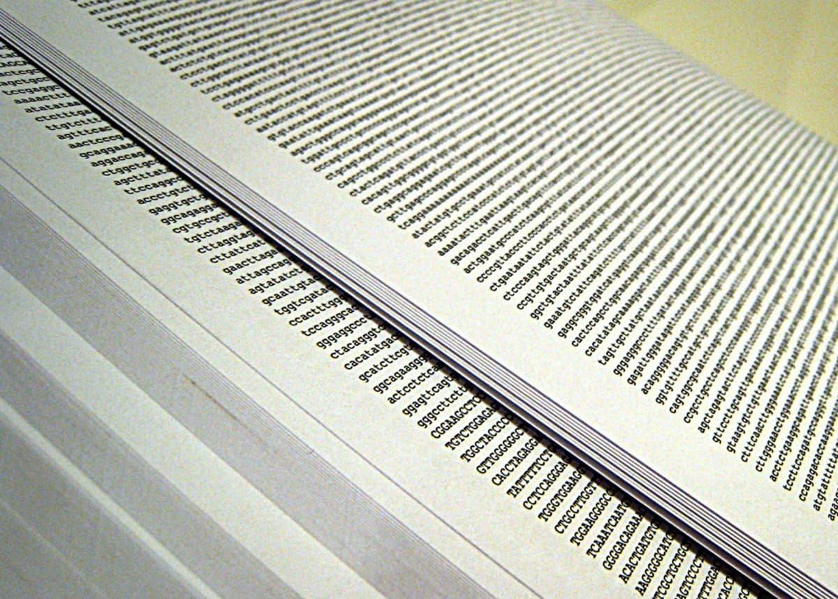 Ihmisen genomi printattuna kirjainriveinä papereripinkalle.