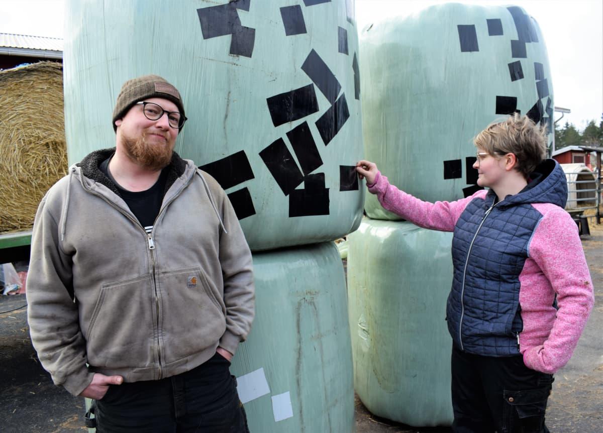 Henri ja Katja Hartikainen naakkojen hakkaamien rehupaalien vierellä
