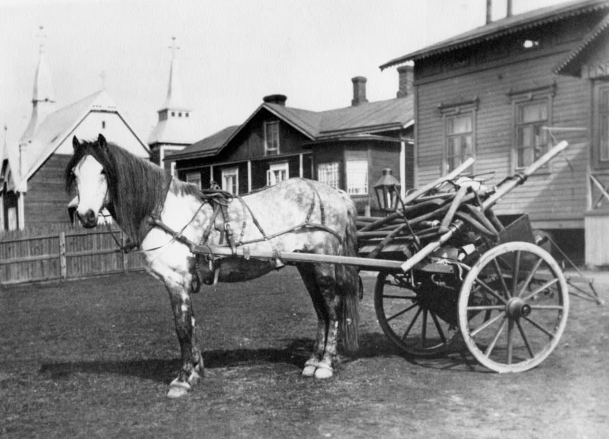 Hevonen ja kärryt