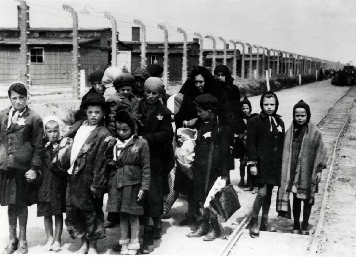 Fångar anländer till koncentrationslägret Auschwitz-Birkenau i juni 1944.