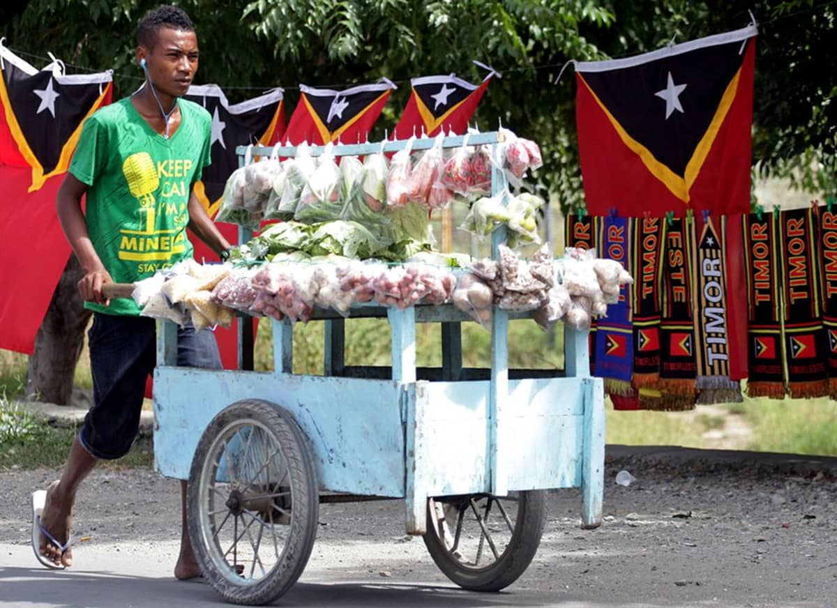 Vihanneskauppias työntää myyntikärryjä.