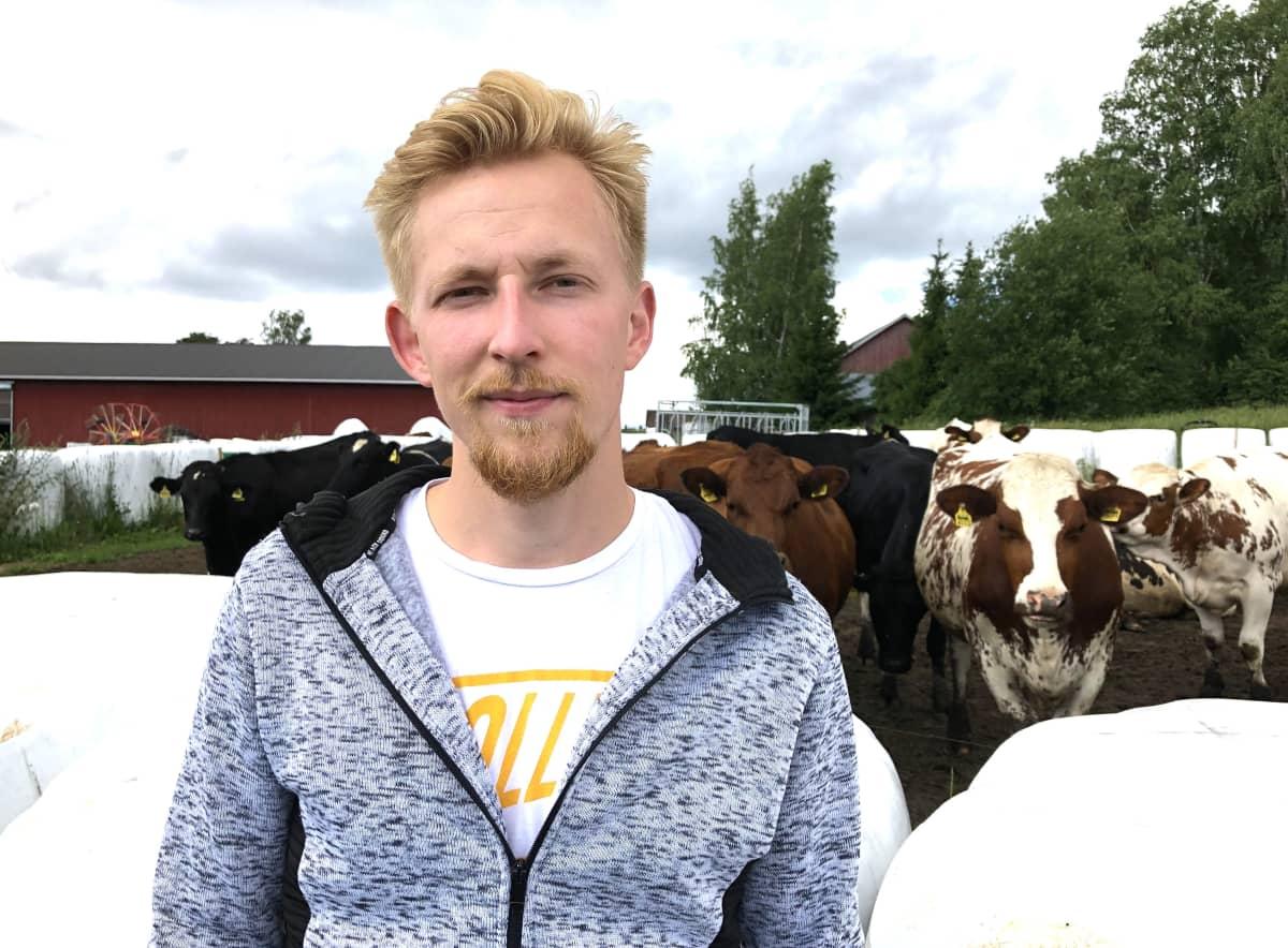 Nuori mies katsoo kameraan, takana seisoo lehmiä.