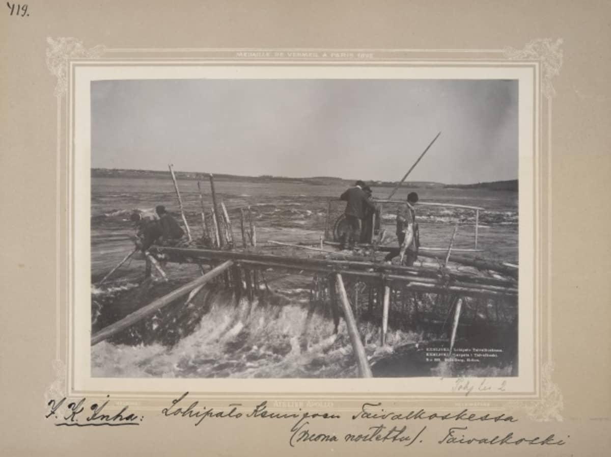 Mustavalkoinen valokuva viidestä miehestä puisella padolla, jonka alla kuohuu joki. Yksi mies roikuttaa kädessään isoa lohta.