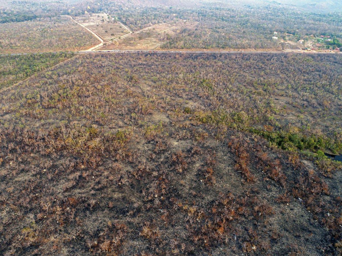 Palanutta maastoa Mato Grosson osavaltiossa Brasiliassa 20 elokuuta.