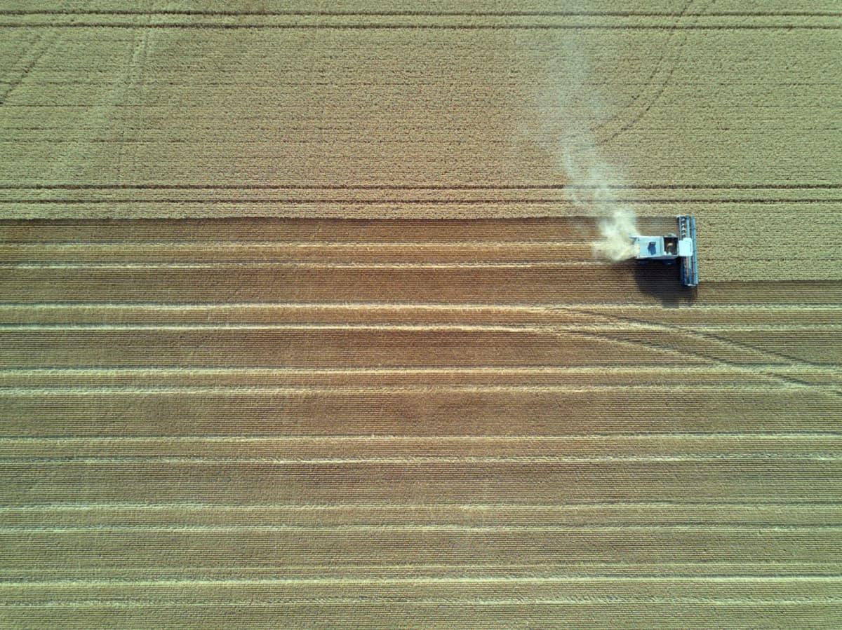 Ilmakuva leikkuupuimurista pellolla.