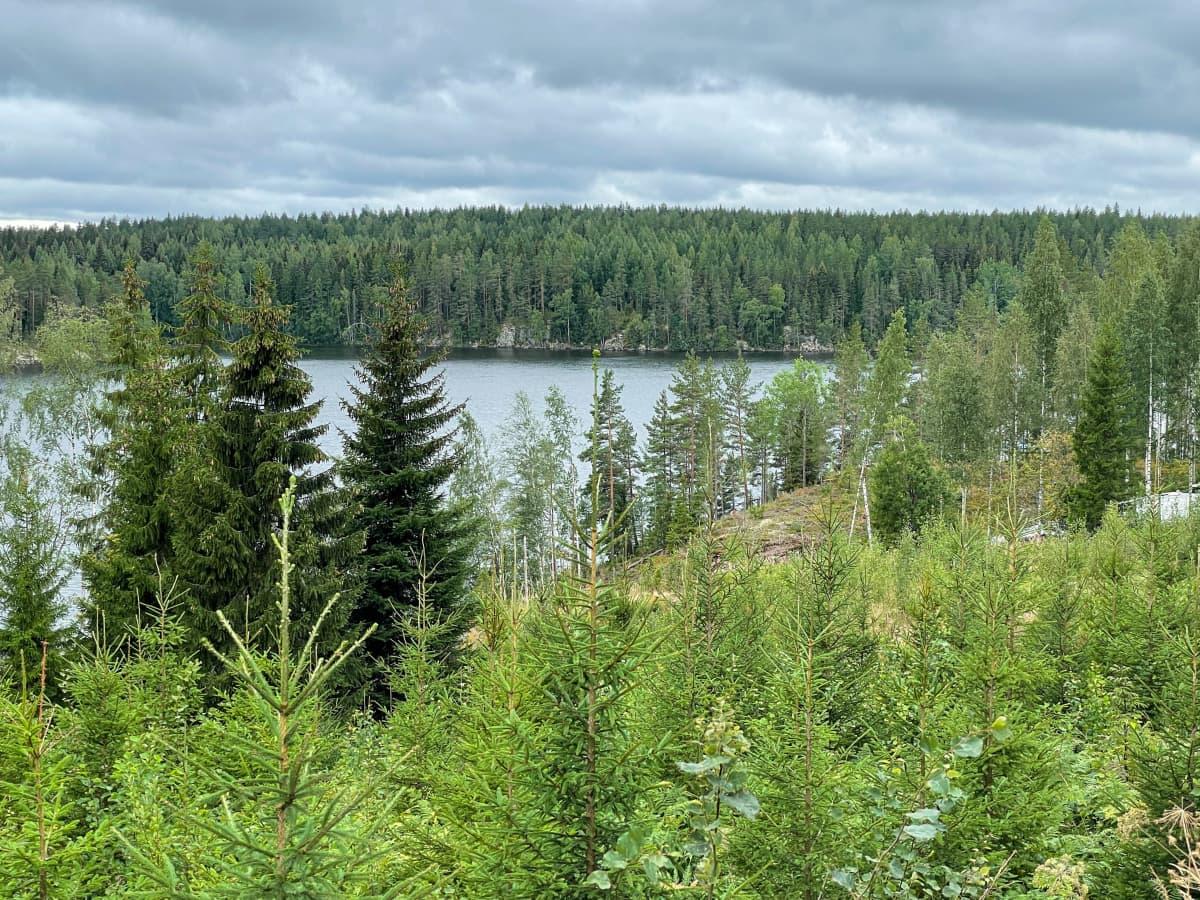 Uusia tontteja Rutolan kylässä Lappeenrannassa, taustalla Kähönsalmi.