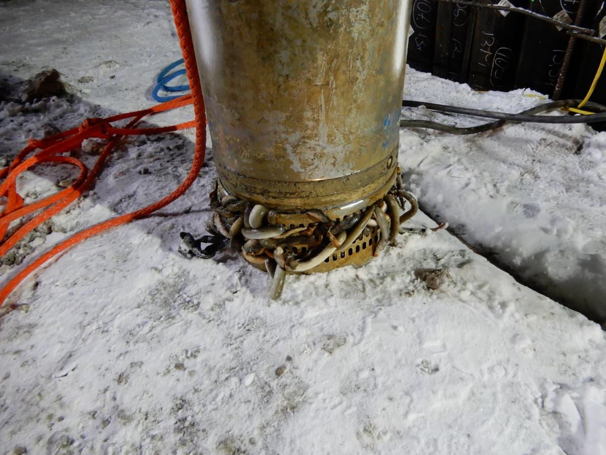 Nahkiaiset tukkivat vesivoimalaitostyömaalla vesipumpun.