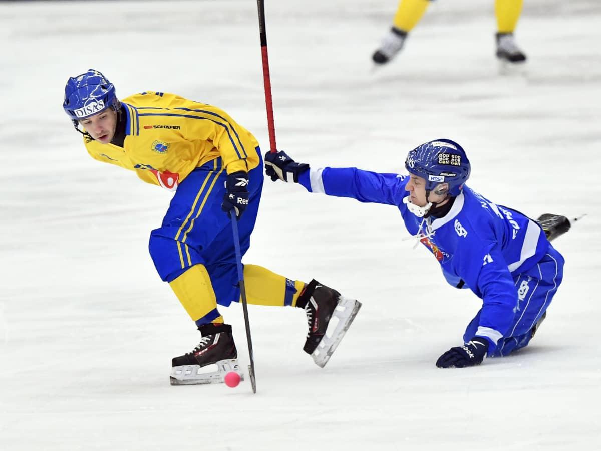 Jääpallo, Ruotsi-Suomi 17.1.2017