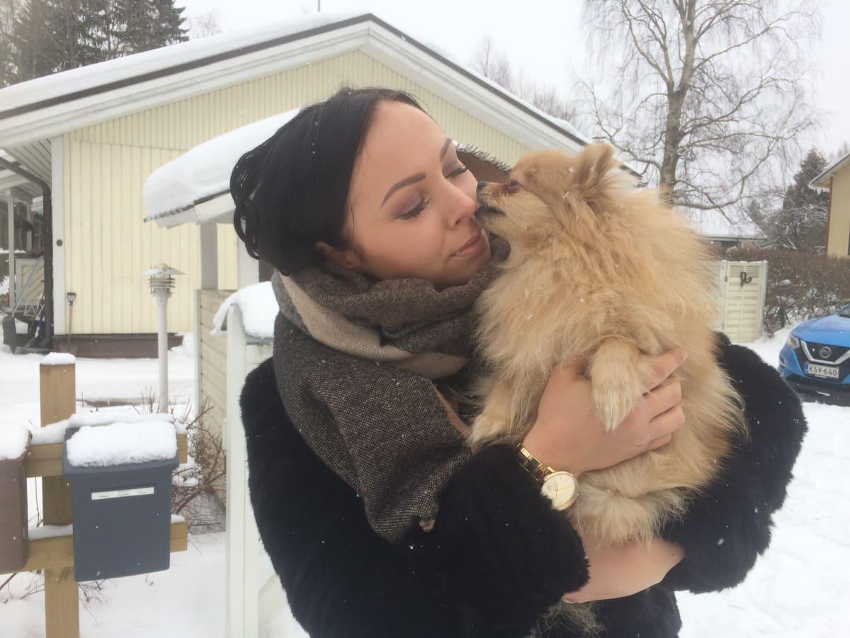 Koira, Pomeranian