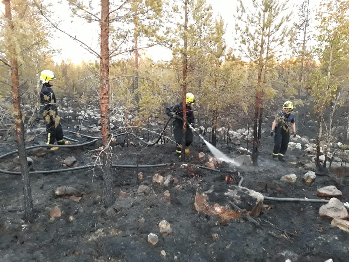Palomiehet sammuttavat Kokkolan Hillinkylässä maastopaloa