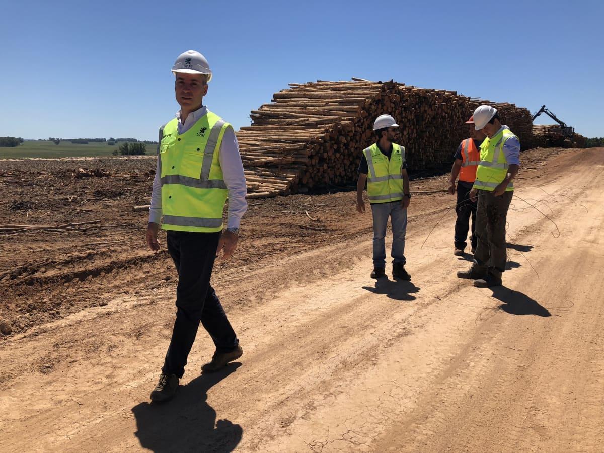 Ricardo Methol vastaa UPM:n eukalyptusplantaasien kehityksestä.