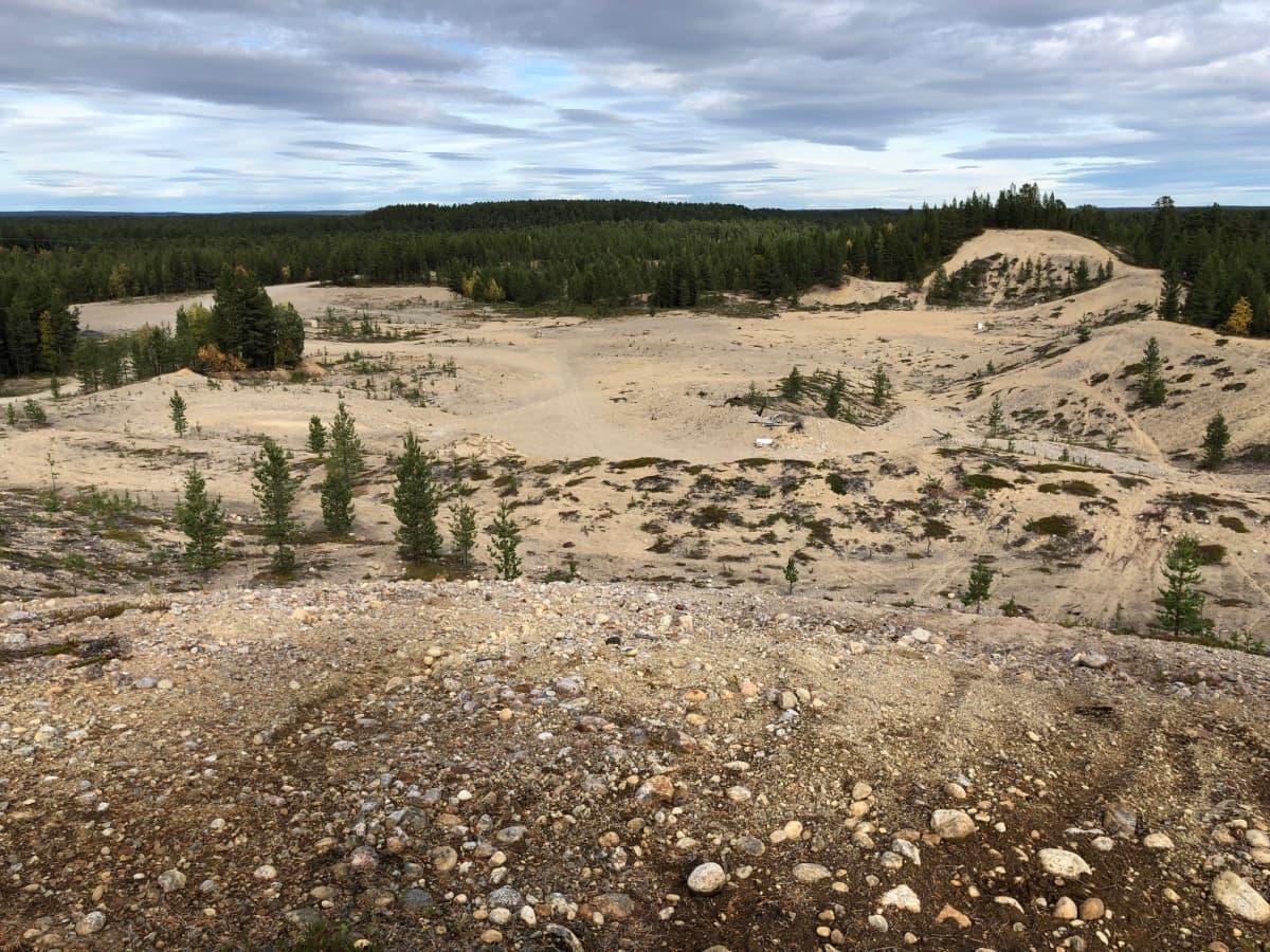 Vanha soramonttu Tuuruharjun lounaispäässä. Tämän alueen Lapin ELY-keskus luokitteli pohjavesialueeksi Tuuruharju A. Kaamanen, Inari, syyskuu 2019.