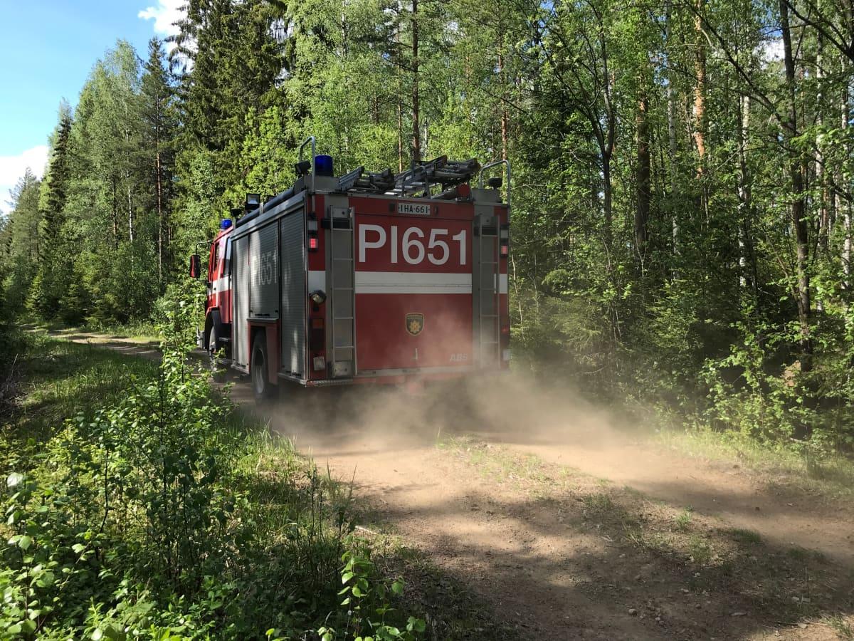 Paloauto metsätiellä