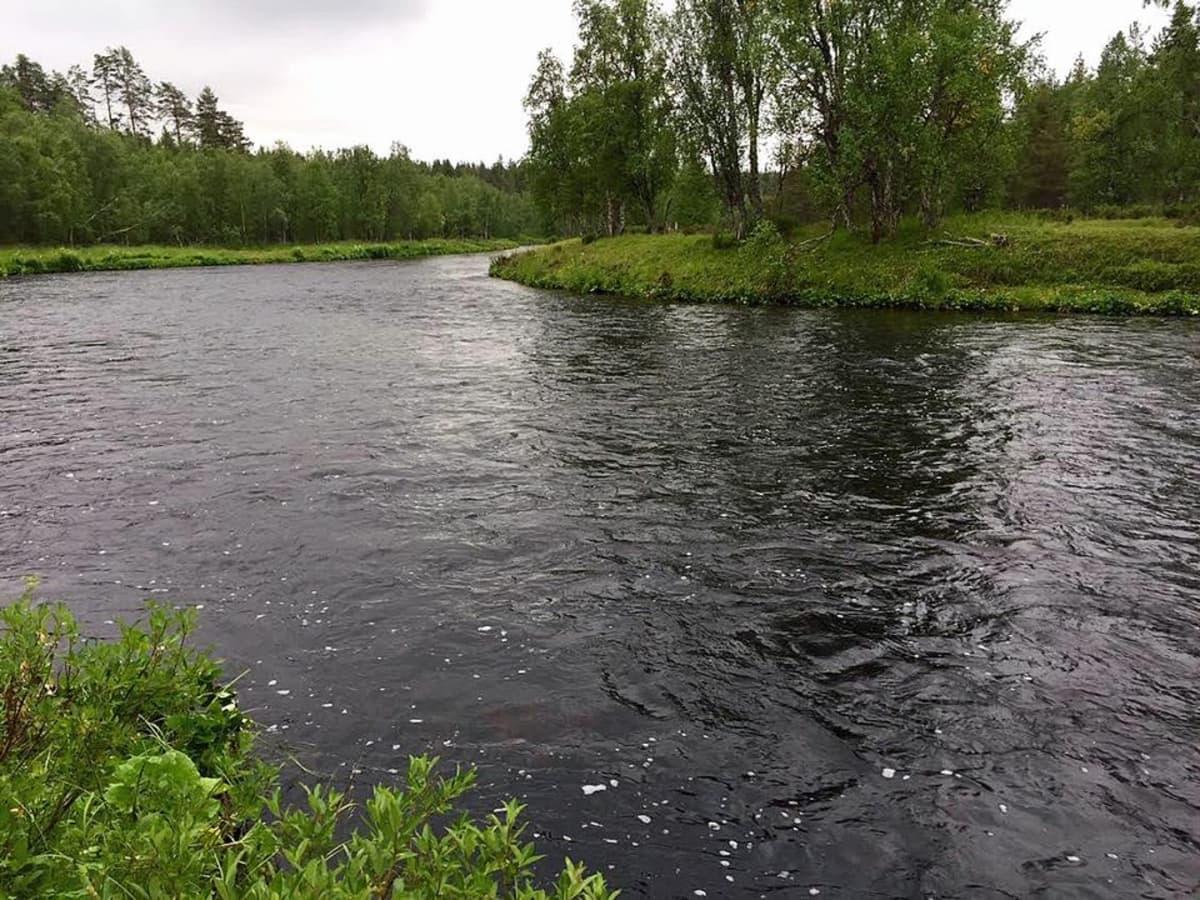 Nuorttijoki Savukosken kunnassa elokuu 2015