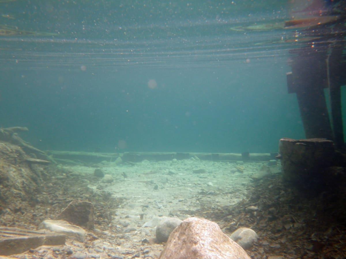 Valkiajärven vesi on kirkasta.