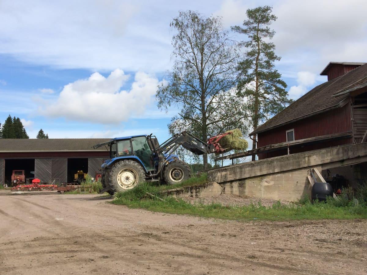 Traktori kuljettaa heinäpaalia maatilan rakennusten välissä