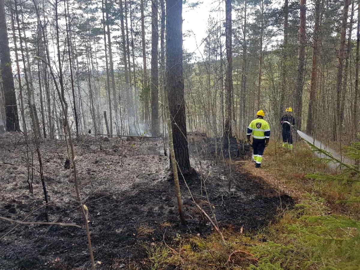 Maastopaloa sammutetaan Jyväskylässä.