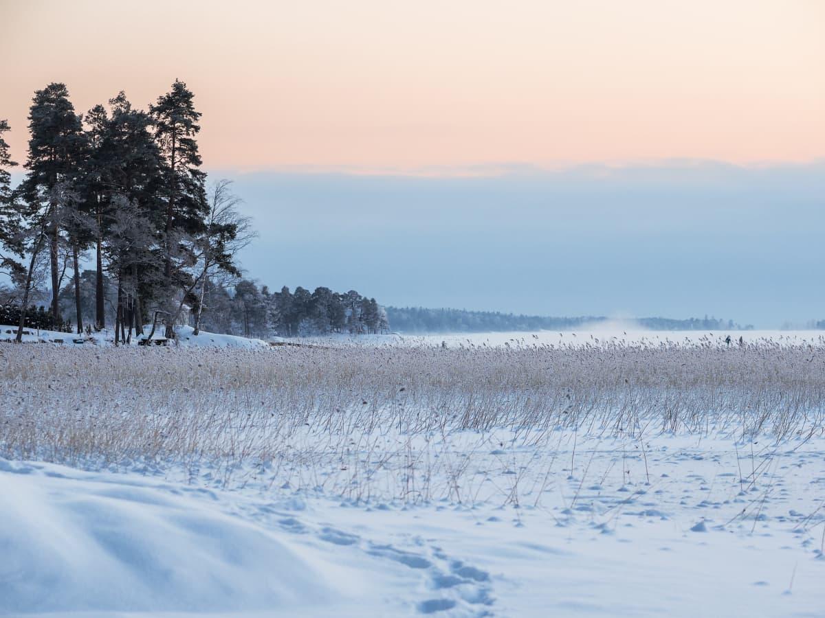 Talvipäivä kävelyä meren jäällä