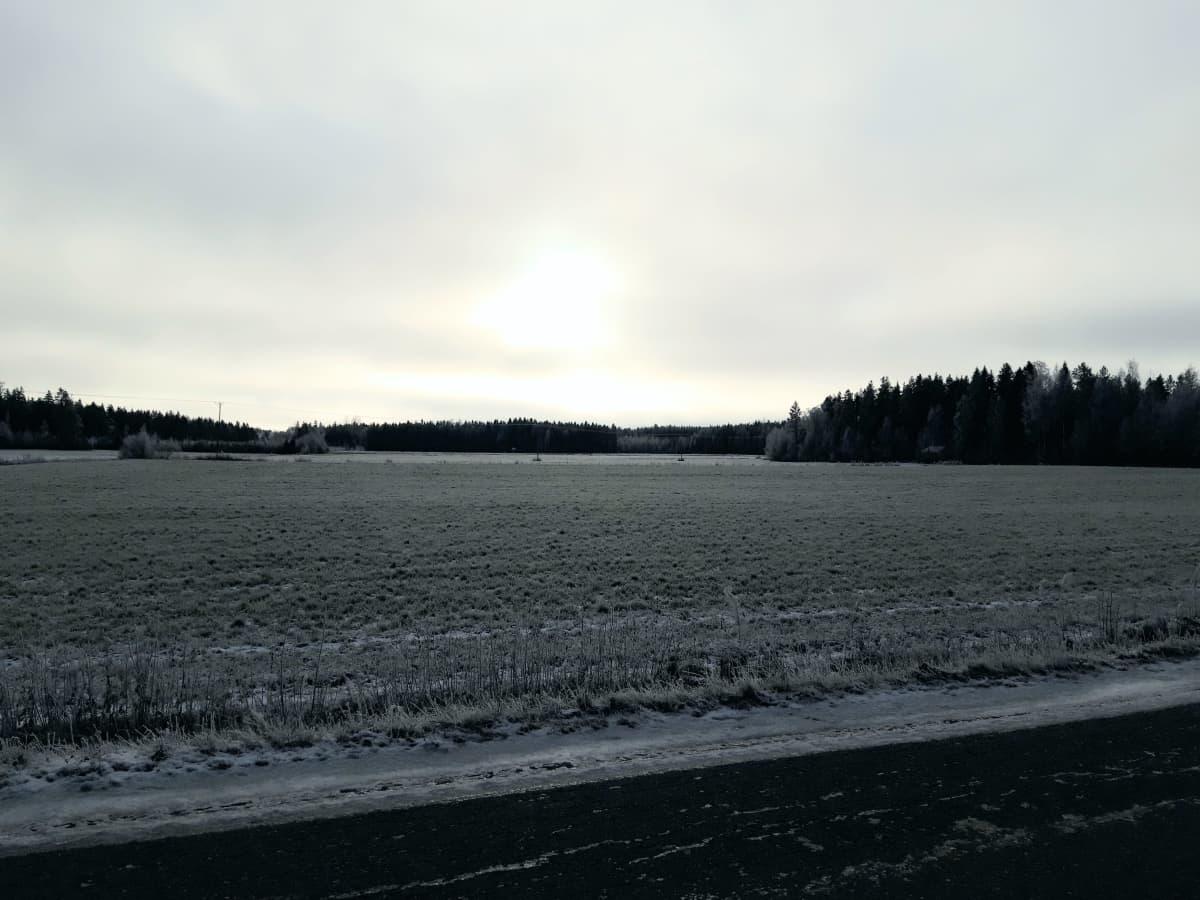 Talvista peltoaukeaa Vetelin Räyringissä.