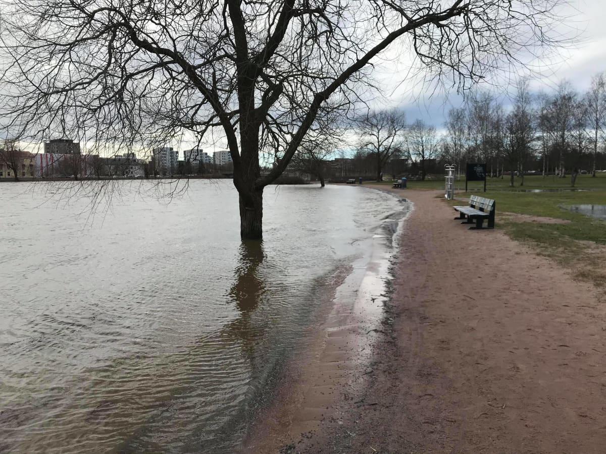 Kokemäenjoki tulvii