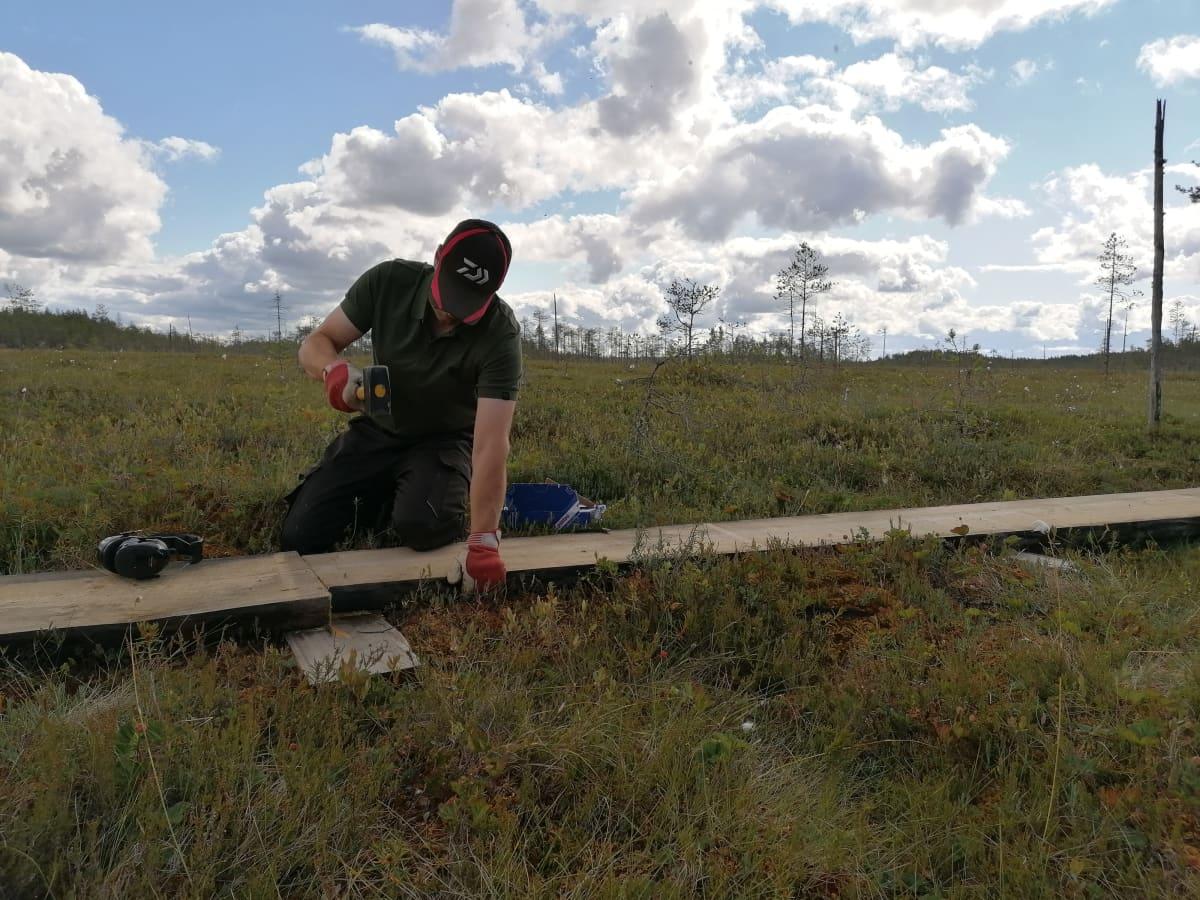 Mika Issakainen rakentaa pitkospuita