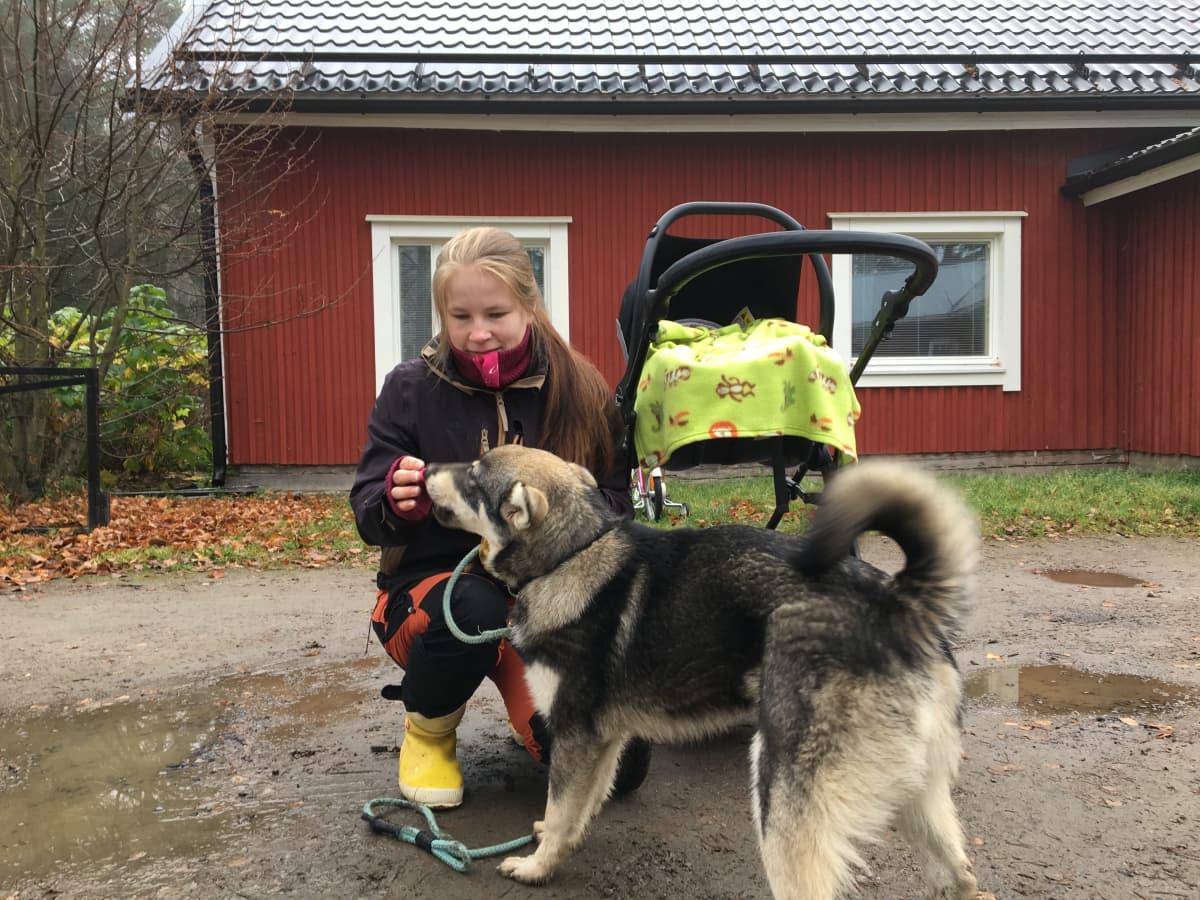 Metsästystä harrastava kärsämäkinen Jaana Luomajoki, Veikko-koira ja vauva.