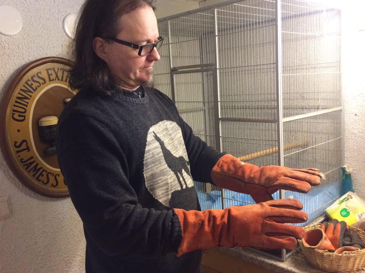 Jarmo Lautamäki esittelee petolinnun kestäviä hanskoja.
