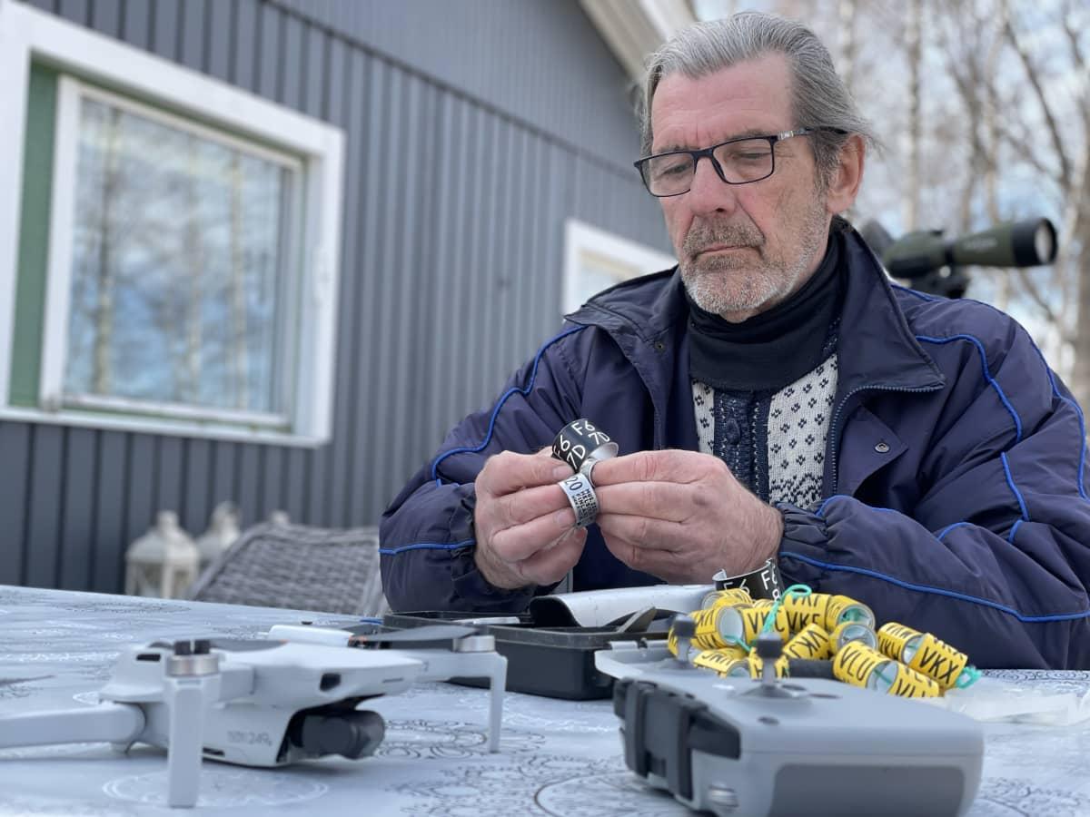 Tapio Osala istuu pöydän ääressä ulkona, käsissä lintujen renkaita.
