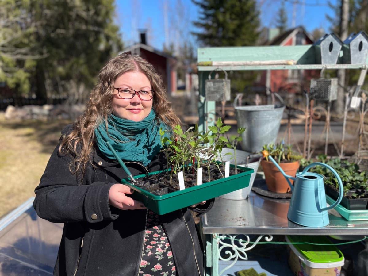 Linda Peltola pitelee taimilaatikkoa puuutarhassaan