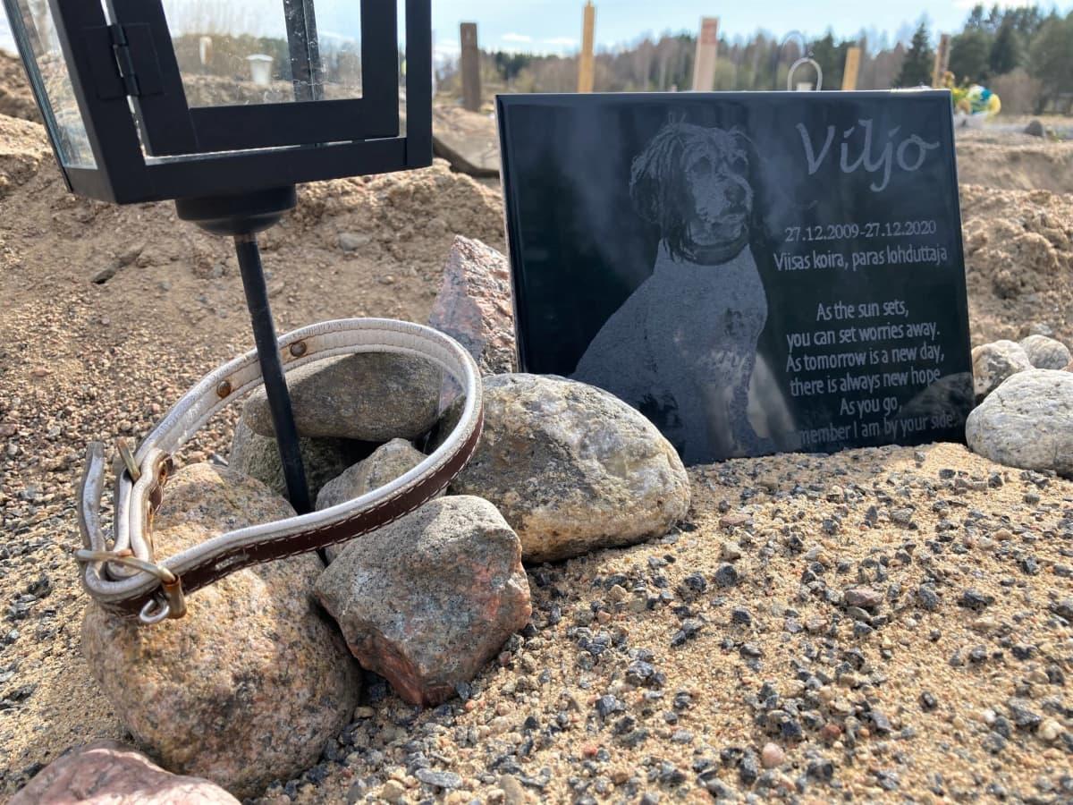 Seinäjokelaisen Anna-Maria Soinin koiran muistolaatta Seinäjoella lemmikkieläinten hautausmaalla.