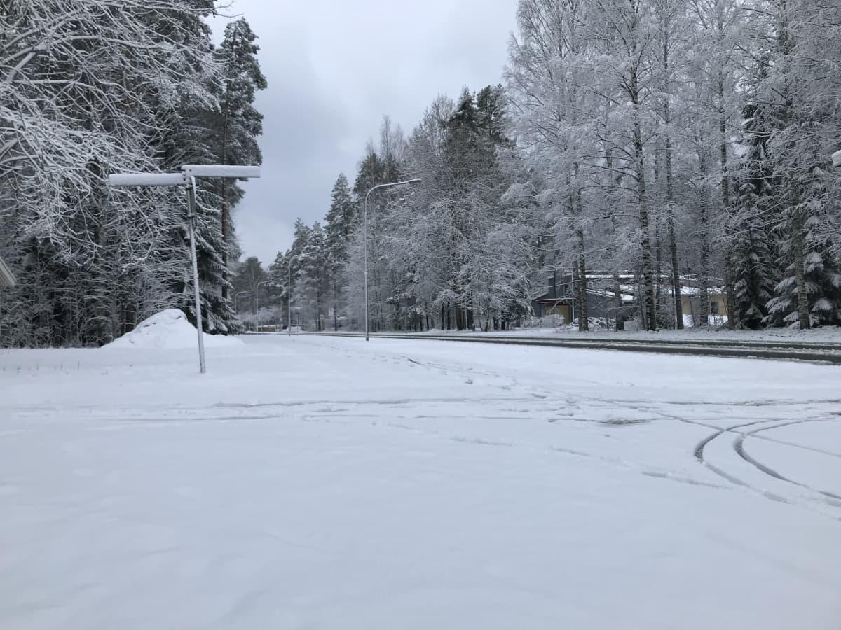 Kevyen liikenteen väylä on lumen peitossa Joensuun Linnunlahdella.