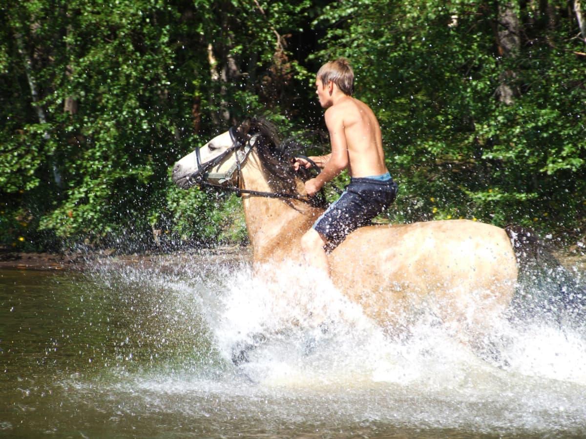 Arvi Savolainen rider en häst genom vatten.