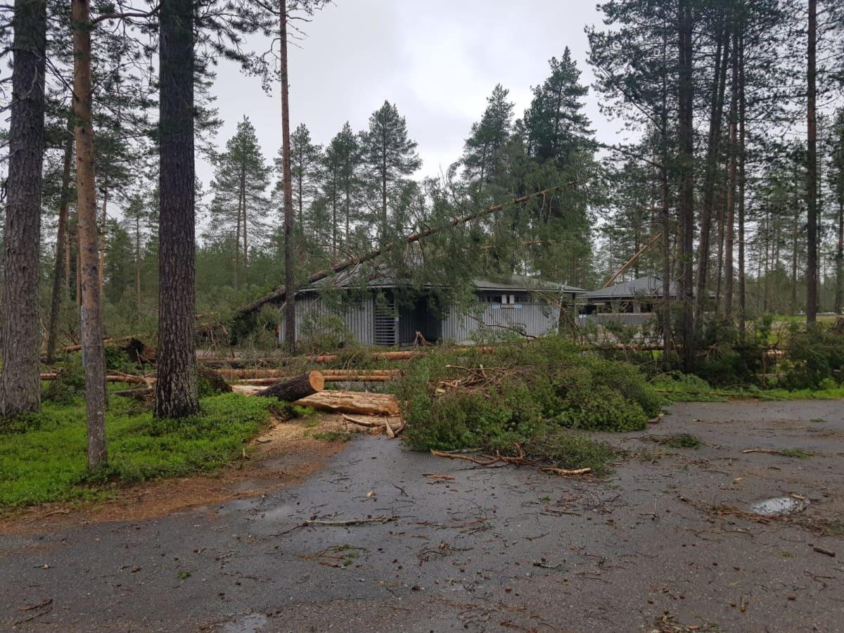 Kylmäluoman leirintäalueen huoltorakennuksia ja kaatuneita puita myrskyn jälkeen.