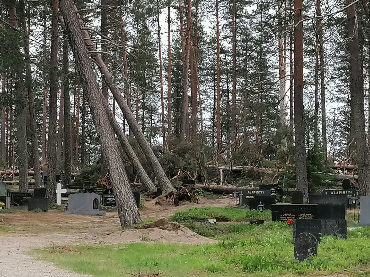 Puita on kaatunut myrskyssä hautausmaalla Taivalkoskella.