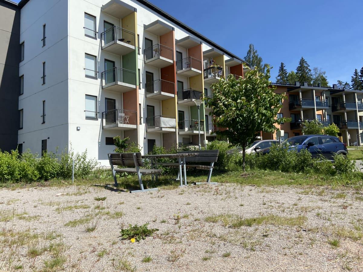 Uuden kerrostalon pihamaalla on rikkaruohoja ja pensaat hoitamattomia