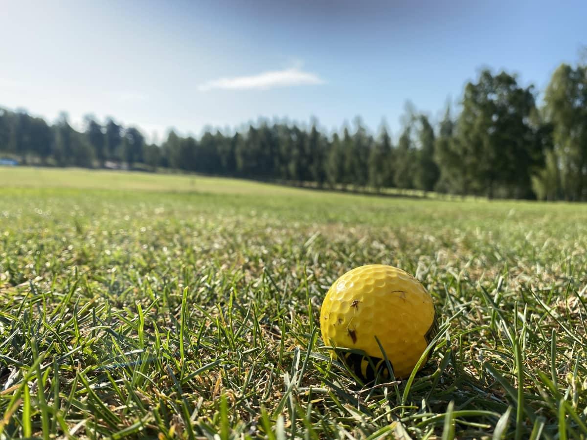Lähikuva keltaisesta golfpallosta golfkentän nurmella.