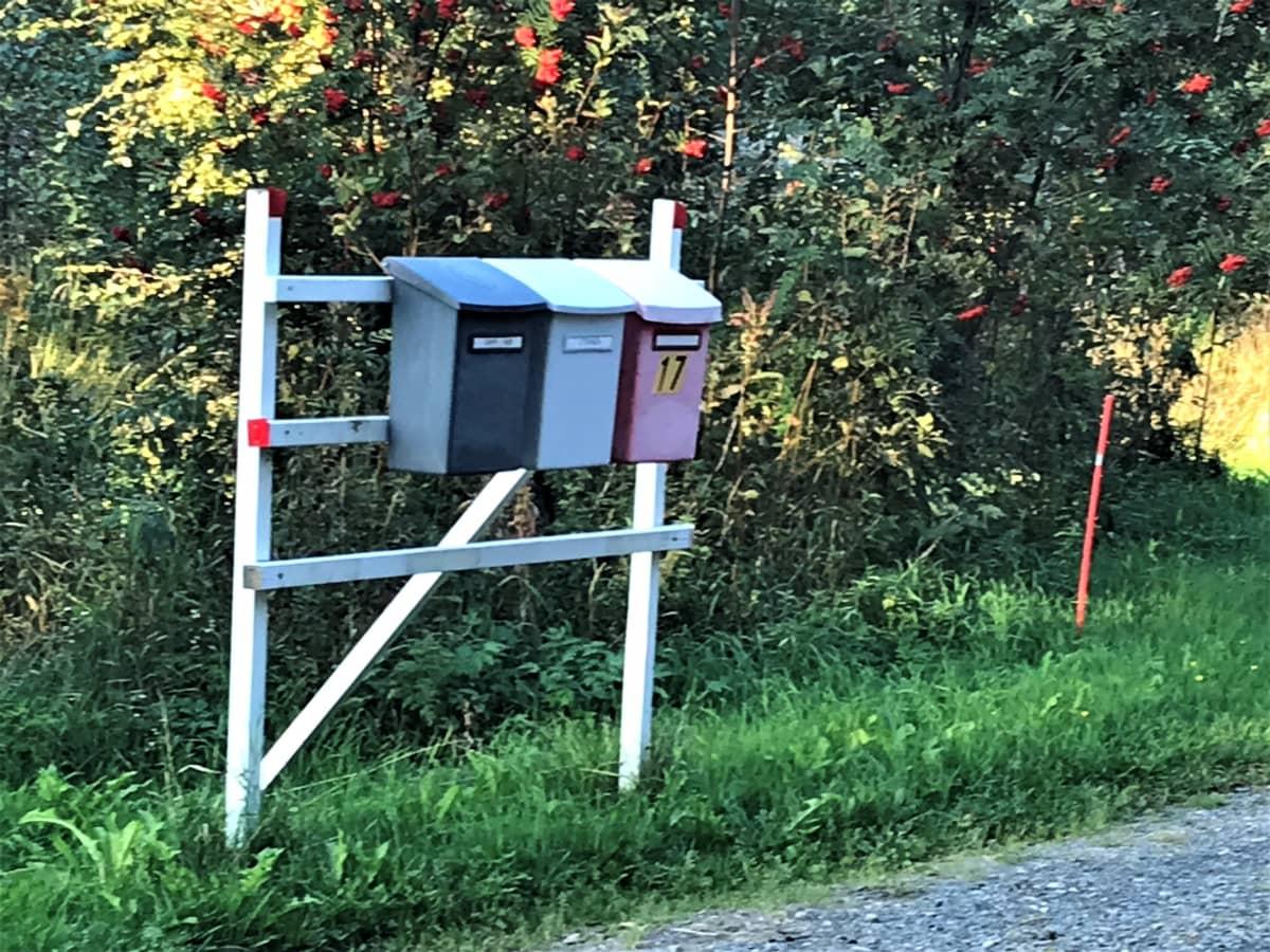 Postilaaatikkorivistö sivutien pientareella maaseudulla.