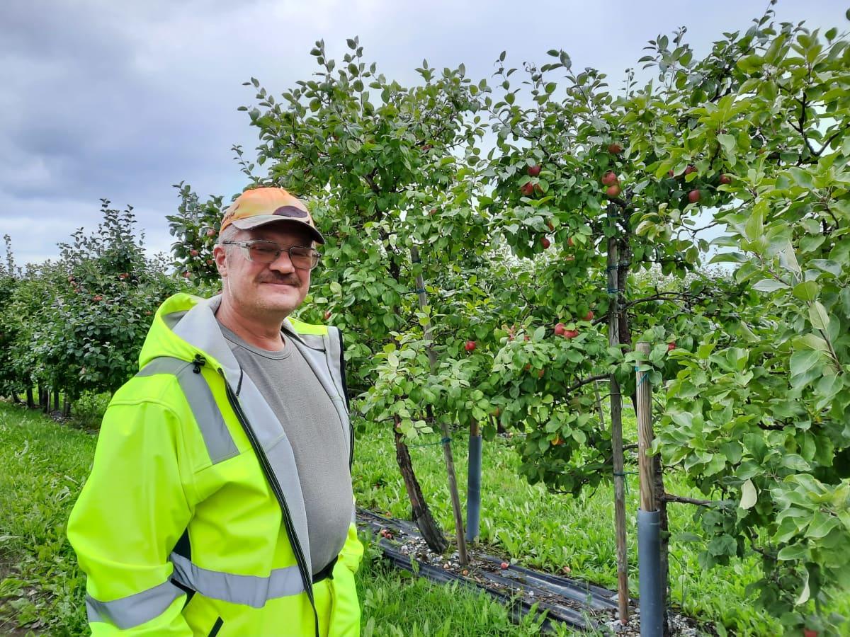 Omenanviljelijä Petteri Holopainen seisoo omenapuiden vieressä