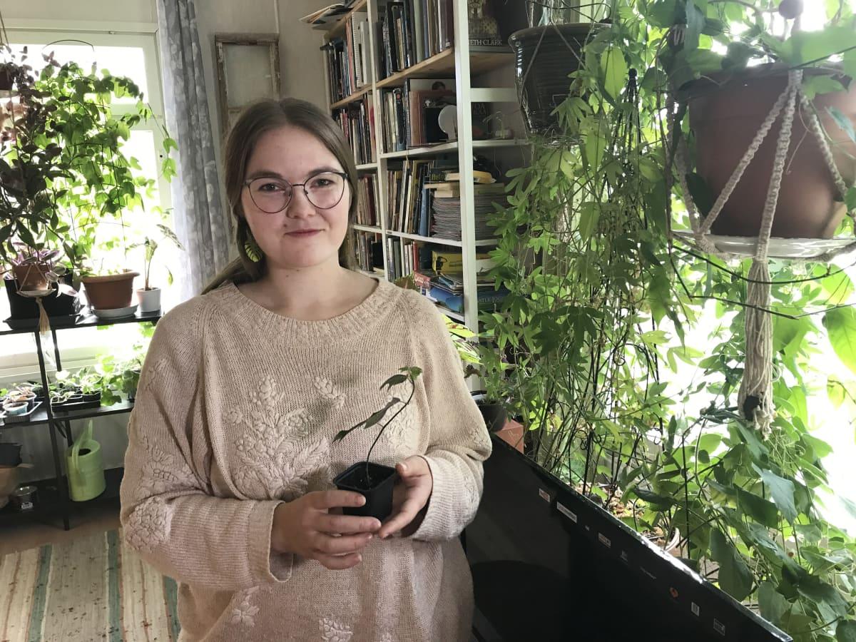 Emilia Schulman pistokas kädessään keskellä vihreää olohuonetta