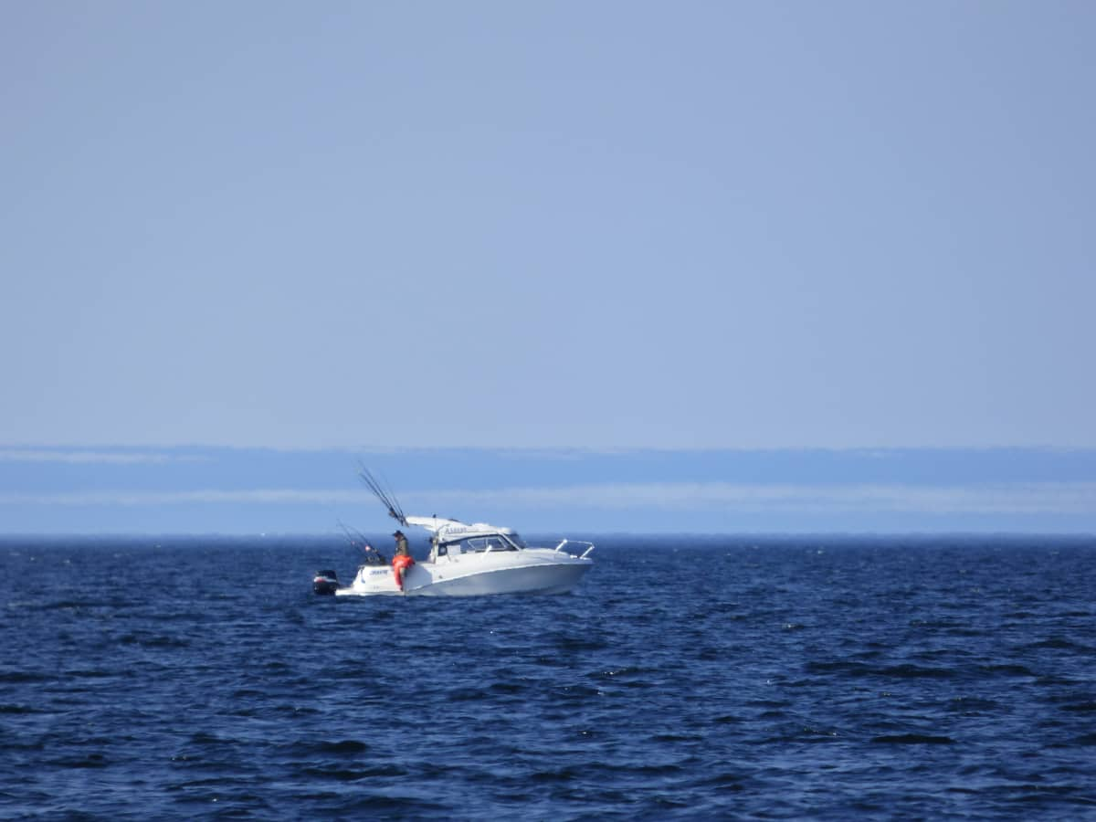 Lohenuisteluvene avomerellä