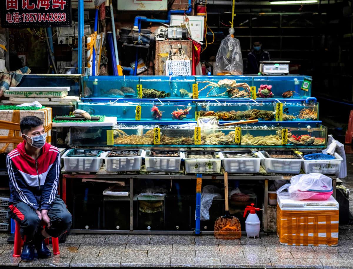 Guangzhoun kaupungin mereneläviin keskittynyt tori oli aikaisemmin tunnettu myös villieläinten kuten krokotiilien myyntipaikkana. Nykyisin useimmat villieläinkojuista on suljettu.