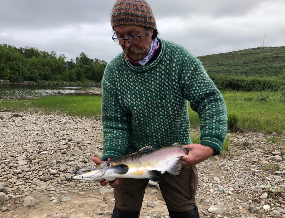 Kyttyrälohi Neidenin kalastuskunnan puheenjohtajan Karl Magne Arvolan käsissä. Näätämö, Norja 14.8.2019
